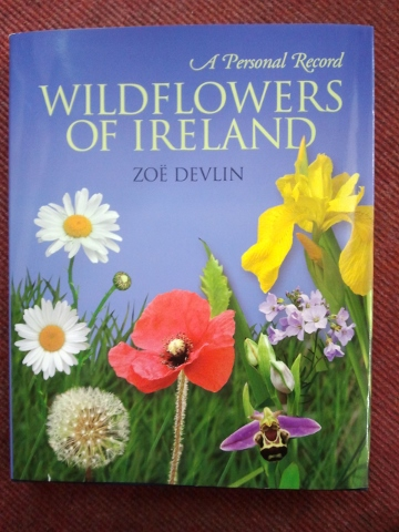 Wildflowers of Ireland.